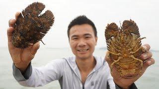 阿烽出海带回十只大虫子,长得像外星生物,阿烽二十几年头一回吃