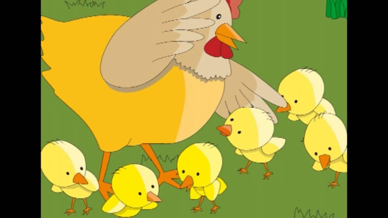 Cuento: El pollito perdido. Noticias en infantil. Info AW Nº27 ...
