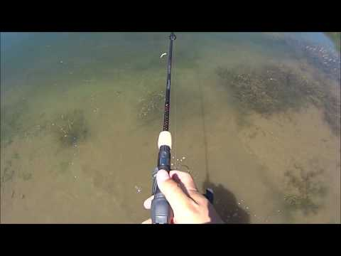 One Hand One Arm Adaptive Fishing Big Rainbow Trout