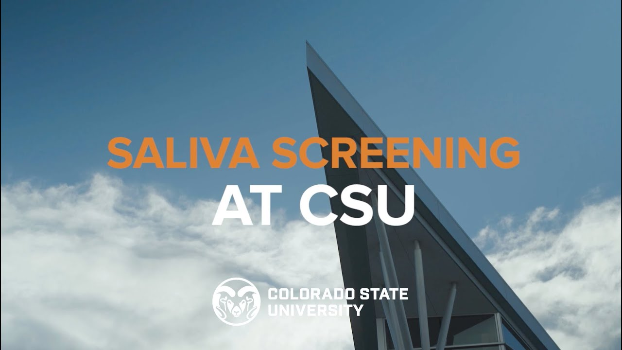 What to Expect at Saliva Screening Locations at Colorado State University