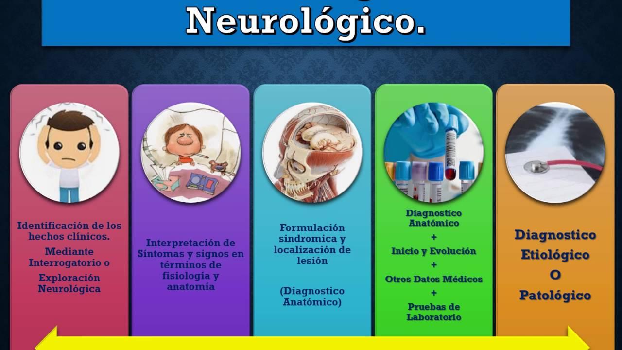 Neurologia - YouTube