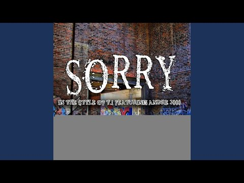 T I  feat  Andre 3000- Sorry - music playlist