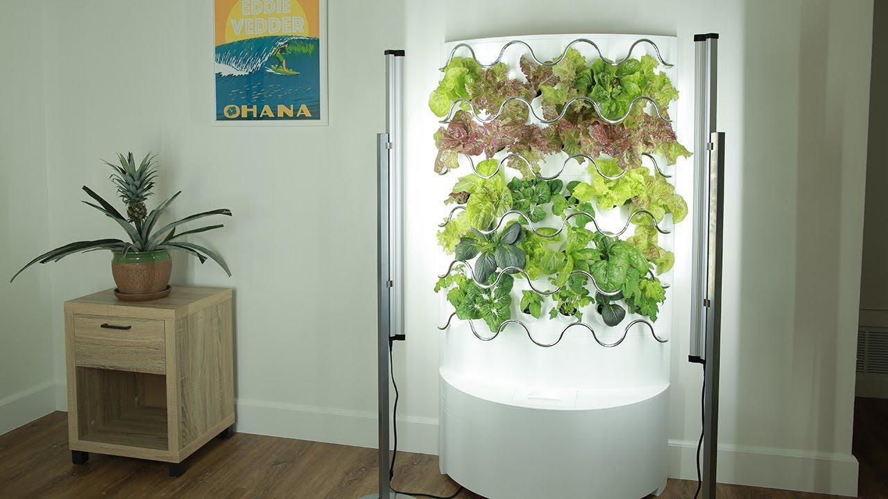 iHarvest Hydroponic Indoor Garden