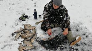 Рыбалка зимой 2019 ОНА МЕНЯЕТ ТВОЙ УЛОВ В 3 РАЗА