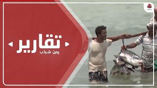 قطاع الصيد .. خسائر باهظة وآلاف الصيادين يفقدون أعمالهم