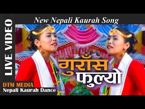 Maya Gurasai Fulyo Resunga Banaima     New Nepali Kaurah Song    DTM Media