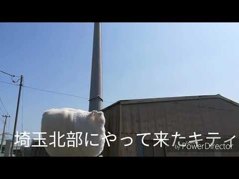 埼玉北部ローカルグルメ旅 深谷~熊谷~行田