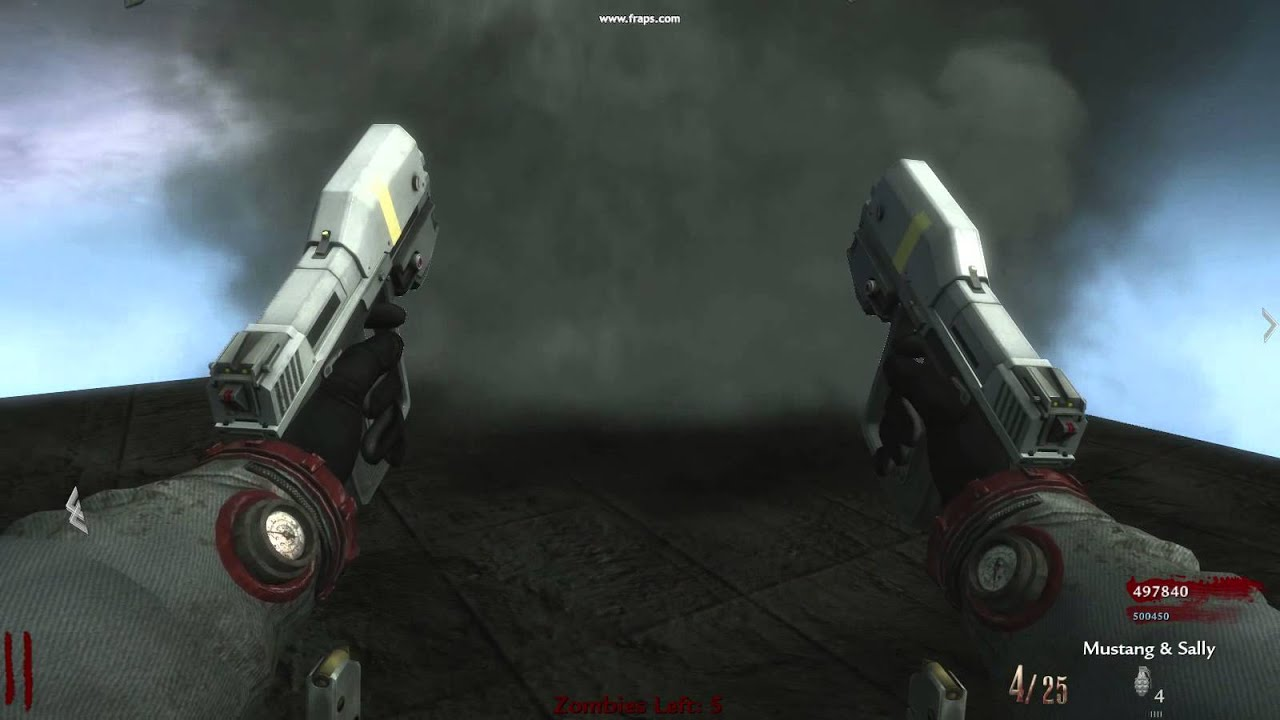 cod waw updated dual halo magnums with mustang & sally versions
