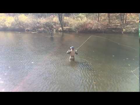 Fly Fishing The Naugatuck River