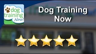 Dog Training Now Schaumburg          Wonderful           Five Star Review by Gina S.