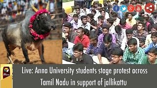 Live: Anna University students stage protest across Tamil Nadu in support of jallikattu
