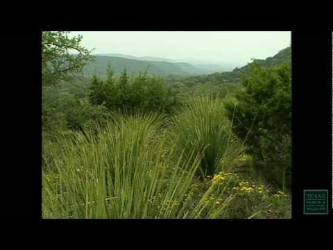 Hill Country State Natural Area - Texas Parks and Wildlife [Official]