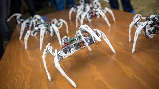 Robot Spiders Controlled by Intel's Edison Chip