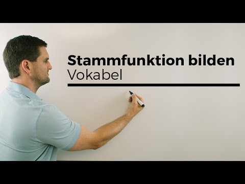stammfunktion-bilden-vokabeln,-aufleiten,-integralrechnung-|-mathe-by-daniel-jung
