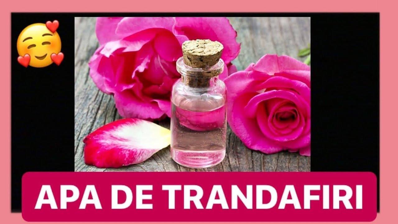 Uleiuri de trandafir pentru tratarea varicelor