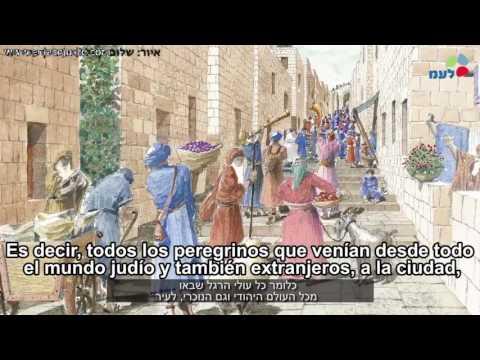 Video: Revelada la Vía de los Peregrinos al Templo de Jerusalem