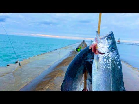 SALMON IN JANUARY??? Michigan Pier Fishing