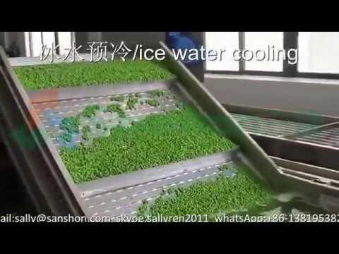 IQF frozen pea processing line