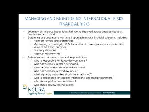 Currency Considerations: Managing and Monitoring International Risk