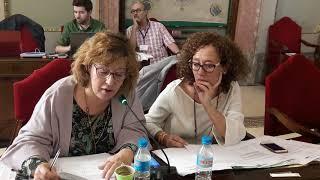 Pleno octubre 2017 - Viales peligrosos en Huerta y pedanías