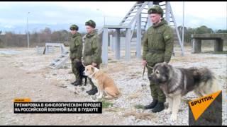Как кинологи тренируют собак на российской военной базе в Абхазии