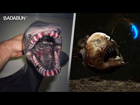 9 Monstruos que viven en el fondo del mar
