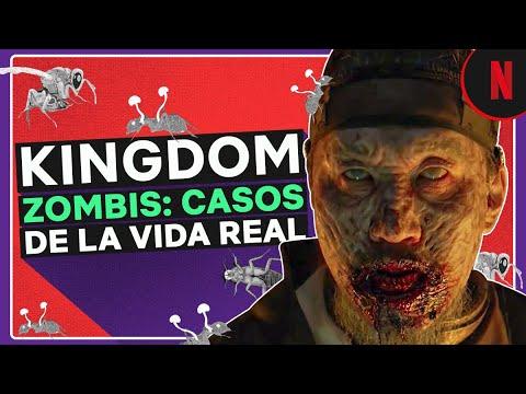 Kingdom y los zombis en la naturaleza