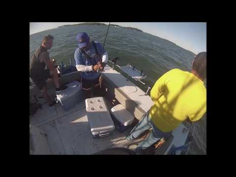 Perch Charter On Lake Erie