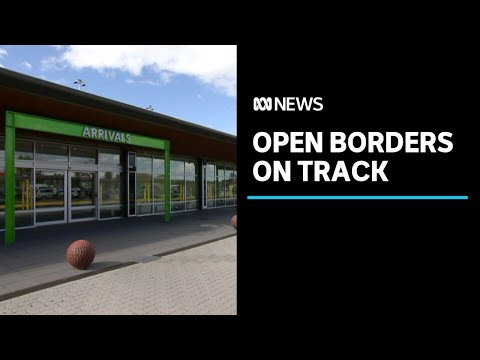 Tasmania on track to reopen its borders to travellers from New South Wales on November 2 |ABC News
