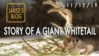 Jared's Blog: Mystery Giant Buck Dead, 10 Yard Ground Encounter
