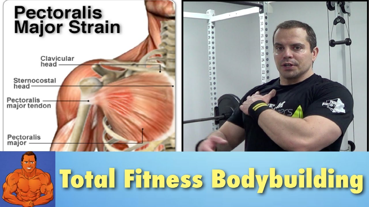 Pulled Chest Muscle Rehab Exercises To Speed Recovery Youtube