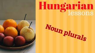 Hungarian lessons 5: Noun plurals ( A főnevek többes száma)