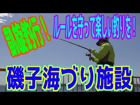 釣り動画ロマンを求めて 243釣目(磯子海づり施設)