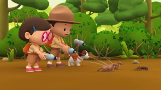 Leo the Wildlife Ranger Minisode #142 - Goliath Birdeater Spider   Animal Cartoons for Kids