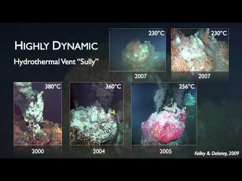 A Powerful Discovery: Volcanoes and Life