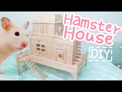 Popsicle Stick House ☆HAMSTER DIY☆