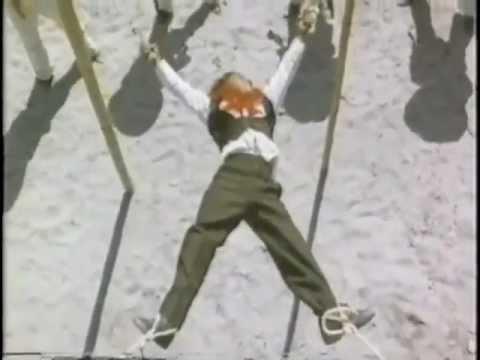 TNT035: D'WILD WILD WENG (1982)