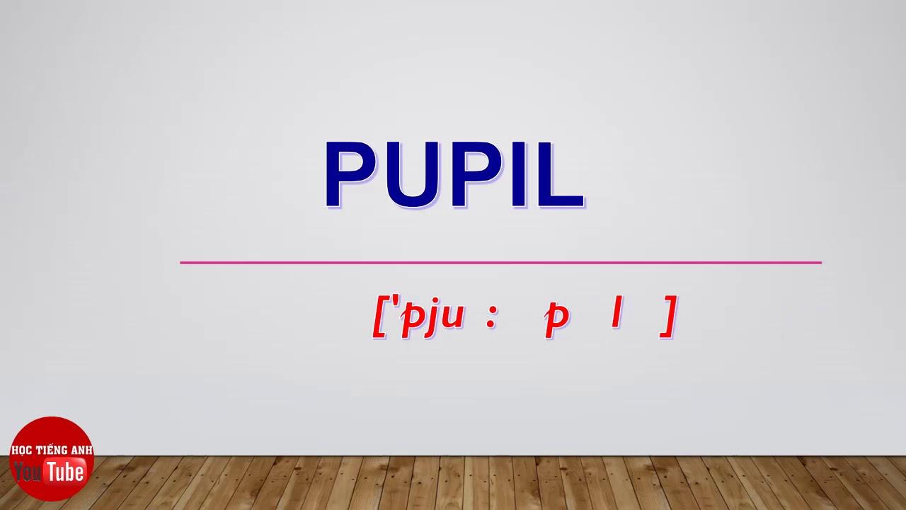 [Cách Đọc/ Phát Âm Tiếng Anh] Từ Pupil   How To Pronounce Pupil