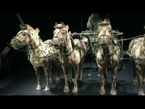 Terracotta Army at Virginia Museum of Fine Arts Video