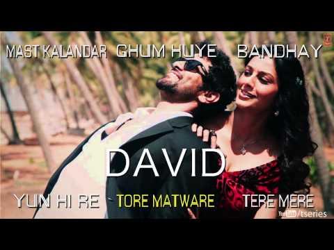 David Hindi Movie Full Songs (Jukebox) | Neil Nitin Mukesh, Isha Sharwani, Vikram & Others