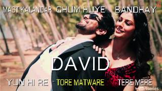 David Hindi Movie Full Songs (Jukebox) | Neil Nitin Mukesh, Isha Sharwani, Vikram & Others