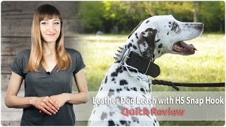 Quality Leather Dog Leash With Quick Release Snap Hook - Safe Release - Review