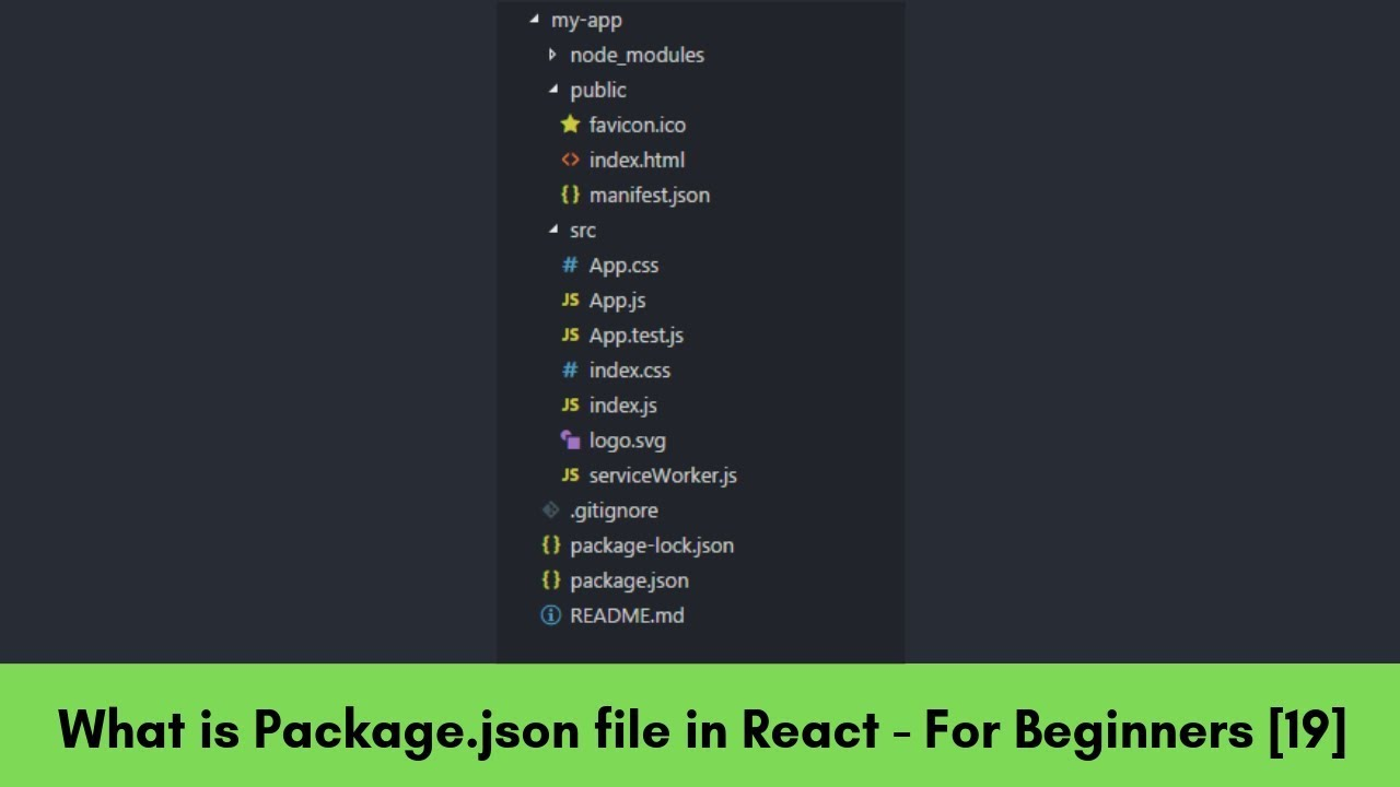 What is Package json? and File Structure of React Application - React For  Beginners [19]
