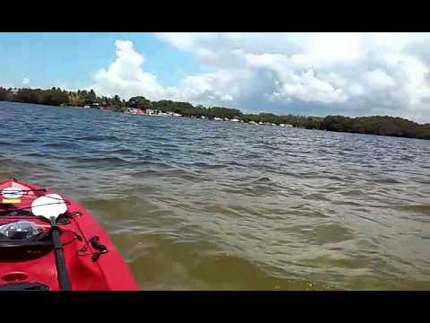 Kayak Sandbar Miami Fl Matheson Hammock