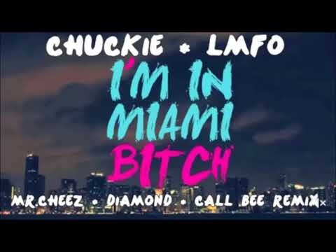 lmfao-im-in-miami-bitch-free-download-kelli-young-video