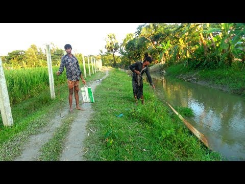 Net Fishing with beautiful nature | Real Village Fishing by Daily Village Life (Part-02)