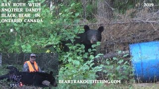Archery Black Bear at Bear Trak Outfitters Ontario Canada Ray Roth does it again!