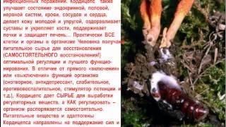 Кордицепс Ольга Шершун 091113