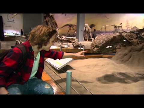 The Zone - Drumheller - Royal Tyrrell Museum