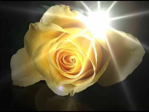 Yellow Rose of Texas ::: Johnny Horton (sorry, make that Bobby) and Lyrics